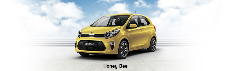 Picanto Honey Bee
